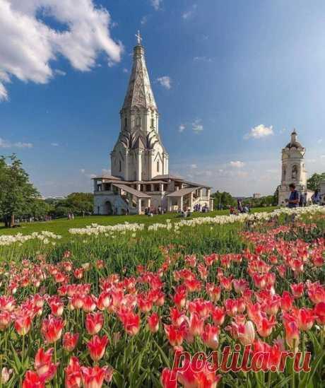 Коломенское прекрасно в любое время года  #фото@mosc1