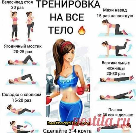 Тренировка дома на все тело для девушки. Как составить круговую тренировку дома #тренировкадома #упражнениядома #тренировкадлядевушки #фитнесдома #bestbodyblog