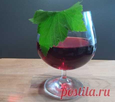 Смородиновая ратафия: готовим по рецепту домашних дворянских винокурен   Хобби'т   Яндекс Дзен