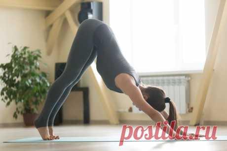 7 асан йоги для тех, кто много сидит