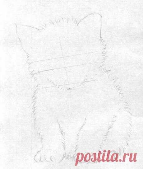 Рисуем чудесного котёнка — Сделай сам, идеи для творчества - DIY Ideas