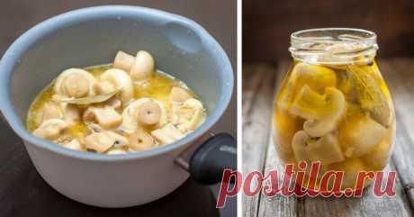 Маринованные шампиньоны за 10 минут: обалденная закуска на праздничный стол! Вкус — не оторваться!