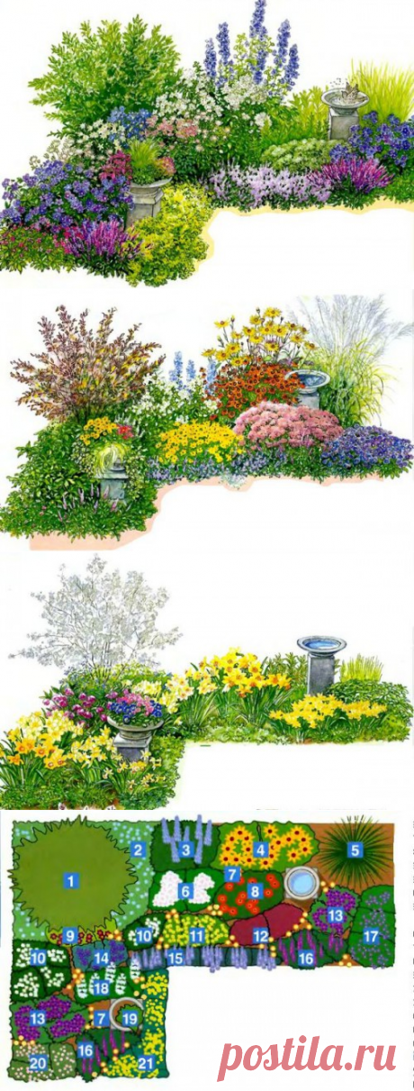 Клумба непрерывного цветения на Sadogolik.ru