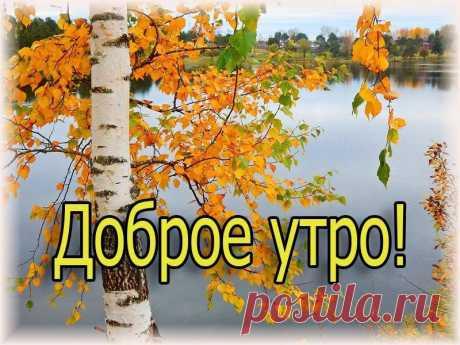 Բարի արավոտ բարեկամներ....☀️ Доброе утро, друзья!! Отличного дня!! Из Есенина ...И золотеющая осень, В березах убавляя сок, За всех, кого любил и бросил, Листвою плачет на песок...