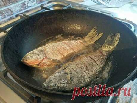 Приготовление костлявой рыбы. После этого, ее можно будет смело давать даже малышам   PROFI-FISHER   Яндекс Дзен