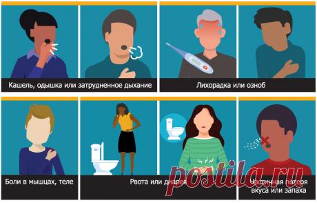 Симптомы коронавируса: первые признаки, симптомы у взрослого, события по дням 98 симптомов коронавируса: до активной фазы, во время болезни и в период реабилитации. Первые симптомы коронавируса, ход по дням легкой, средней и тяжелой фазы коронавирусной инфекции