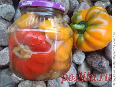 Перцы, фаршированные начинкой из баклажанов, моркови и лука на зиму. Пошаговый рецепт приготовления с фото