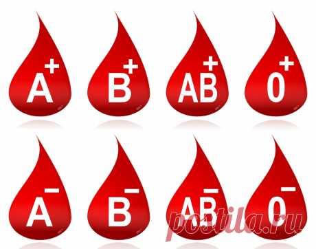 Может ли меняться группа крови? | Вопрос-ответ | Вокруг Света