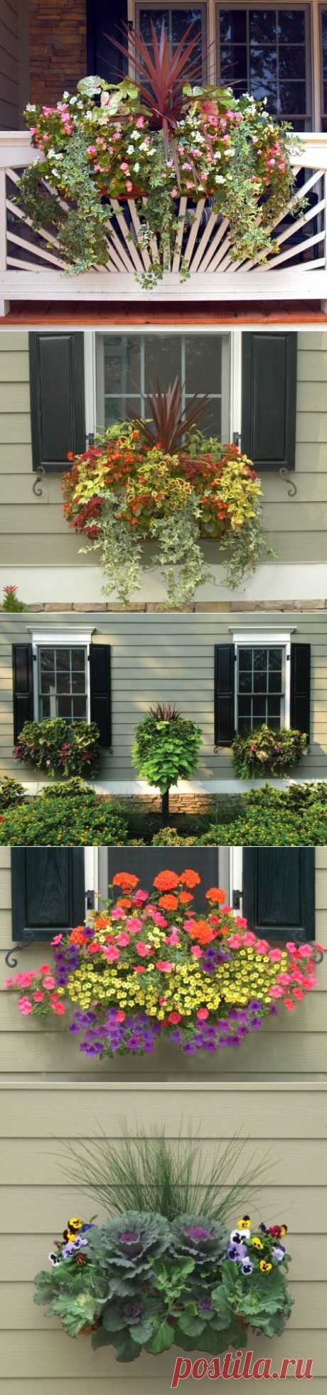 Idea of flower beds just for you.