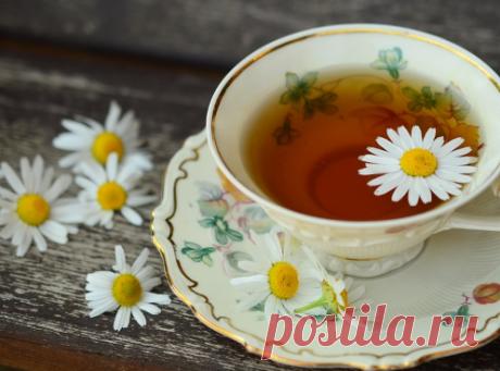 Лучший домашний чай из 5 трав (от 27 болезней) | В лес по грибы | Яндекс Дзен