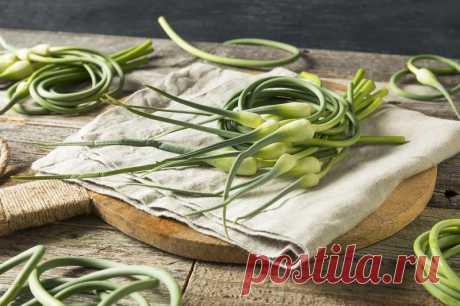 Чесночные стрелки — богатый витаминами продукт, замечательная специя и прекрасное лекарство. К мясу, шашлыкам, на бутерброды, в соусы и омлеты. - Советы и Рецепты