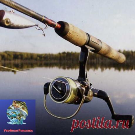 Рыбалка | Блоги о даче, рецептах, рыбалке