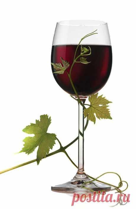 Вино.Доступный,надежный,проверенный способ.