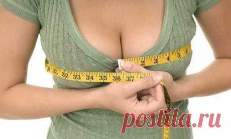 6 продуктов, которые Вы должны включить в свой рацион, чтобы увеличить размер груди