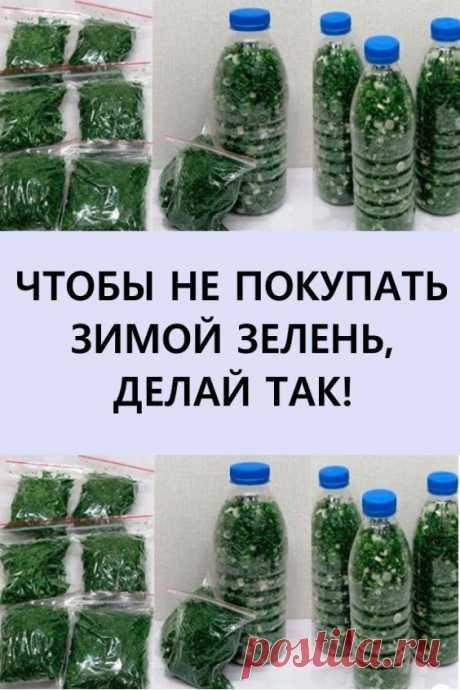 Замораживаем даже зеленый лук! #кулинария #рецепты #еда #заморозка #назиму #заготовкиназиму