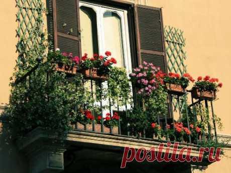 Как украсить небольшой балкон   ЖЕНСКИЙ МИР