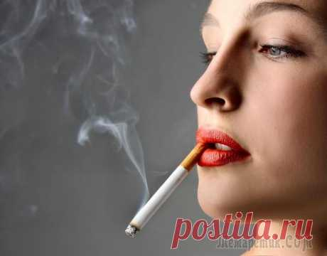 Чтобы неприятный осадок не остался: избавляемся от запаха сигарет в квартире Запах табака в квартире негативно воспринимают даже заядлые курильщики, а для человека без пагубной привычки это настоящее испытание. Тем, у кого в доме есть любители сигарет, проблема прокуренного по...