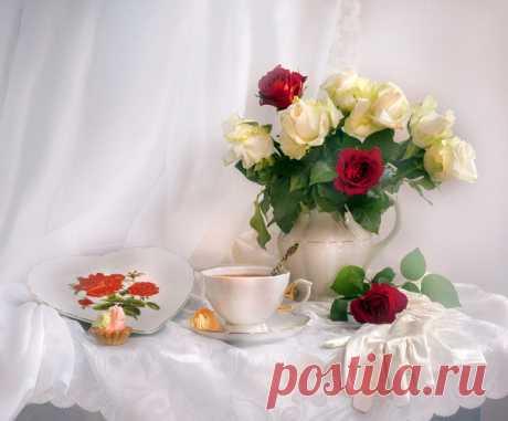 Розы и чайная чашка - фотонатюрморты