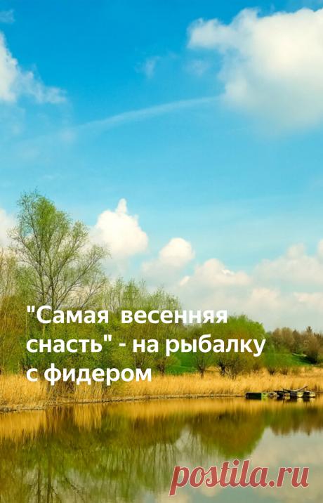 """""""Самая весенняя снасть"""" - на рыбалку с фидером   Рыбалка для людей   Яндекс Дзен"""
