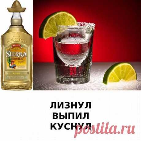 Действия алкогольных напитков