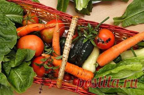 Компаньоны жирных блюд. 8 продуктов, которые снижают уровень холестерина