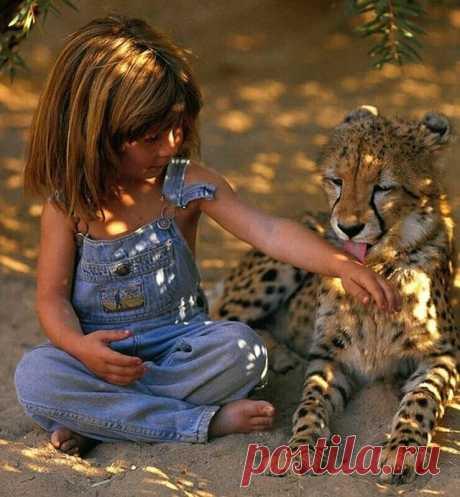 У большинства из нас было хоть и счастливое, но вполне обыкновенное детство. Француженка же Типпи Дегре может похвастать весьма экзотическим детством, которое чем-то похоже на детство Маугли и детство Тарзана. Оно также полно удивительных открытий, приключений и опасностей, а еще крепкой дружбы с животными.