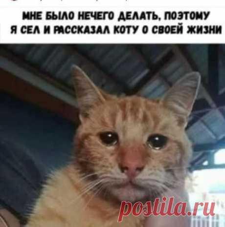 Шикур Шабаев - ДАЖЕ ВОПРОС ТАК НЕ СТОИТ...