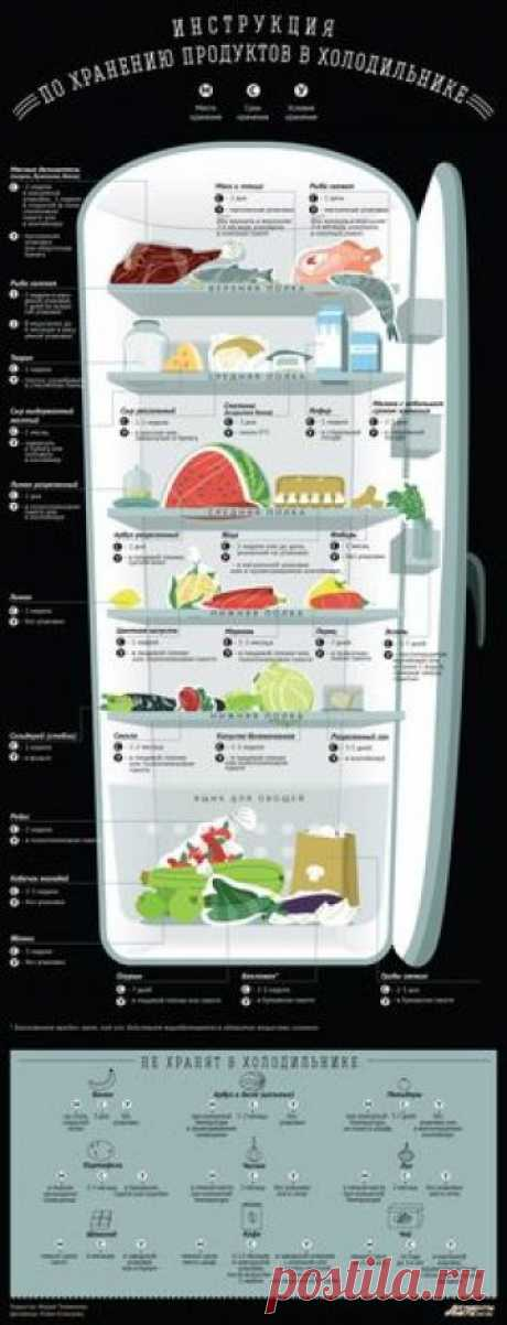 How to store products in the refrigerator