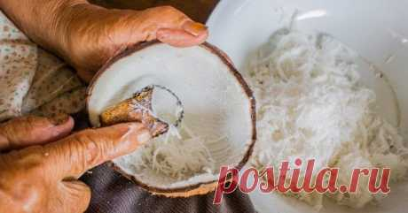 5 причин, по которым кокосы называют «лекарством от всех болезней»
