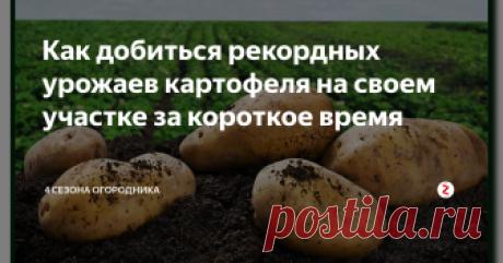 Как добиться рекордных урожаев картофеля на своем участке за короткое время Собрать по-настоящему большой урожай картофеля вполне под силу каждому, если...
