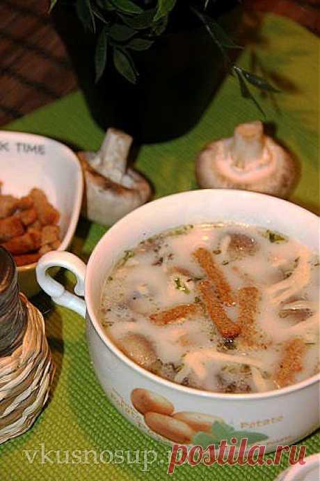 Рецепты вкусных супов.