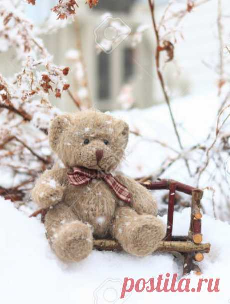 Bear clumsy \/ cute bear – Google +