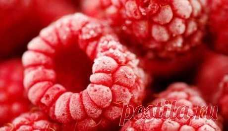 Как правильно замораживать ягоды, овощи и фрукты на зиму  Плюсы заморозки:  Длительный срок хранения — овощи, грибы, фрукты и ягоды можно хранить в замороженном виде не меньше года. Витамины и минералы в замороженных продуктах сохраняются на протяжении всег…