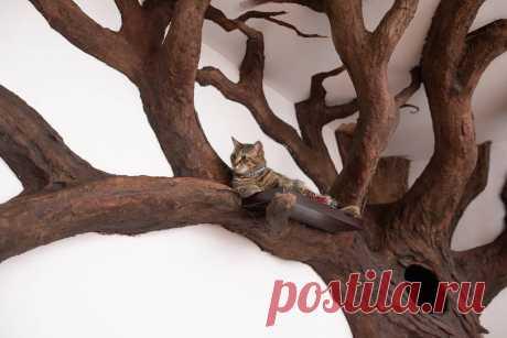 Теперь в квартире «растет» дерево, а хозяйский кот в восторге Талантливый парень по имени Роберт Рогальски работает иллюстратором, дизайнером и скульптором. Молодой человек умеет создавать потрясающих кукол, но это далеко не все его умения. С самого детства Роберту нравятся рассказы о заколдованных мирах...