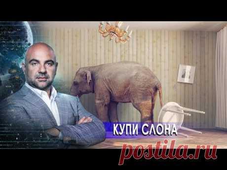 """Купи слона. «Как устроен мир"""" с Тимофеем Баженовым (01.12.20)."""
