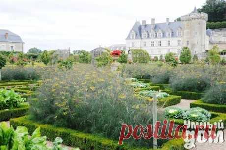 Декоративные огороды замка Вилландри во Франции. Потрясающе! Умный дом - идеальный уголок для хозяюшки!