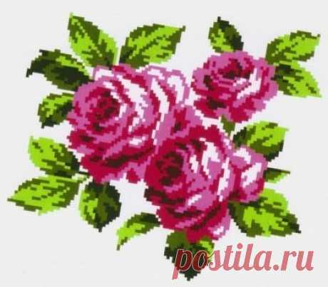 K301 Букет роз купить. Фото