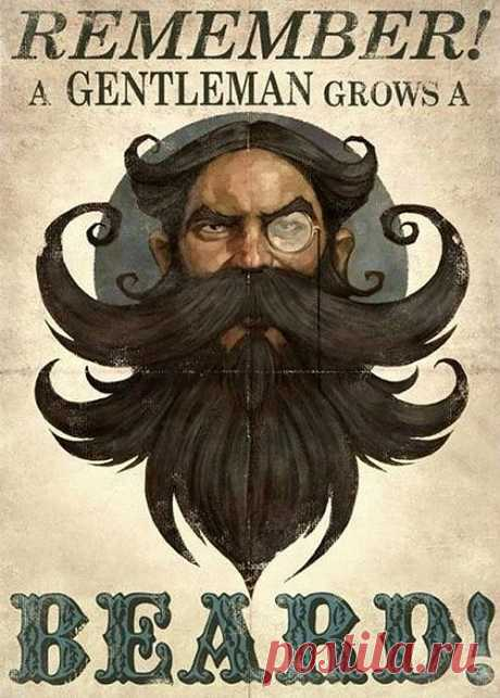 allfun.md - Тема - Бородатые портреты от Виктории Вонки и бородатые рассказы от allfun-a