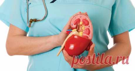Заболевания почек: факты, виды, симптомы, осложнения, профилактика, лечение Факты Почки, каждая размером с кулак, играют три основные роли: выведение шлаков из организма; предотвращение накопления токсинов в крови вырабатывает гормоны, которые контролируют другие функции организма, такие как регулирование кровяного давления и производство красных кровяных клеток;...