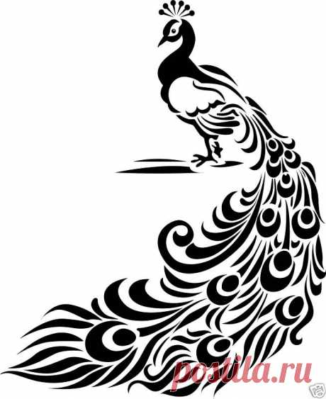 Image detail for -Peacock Vinyl wall Art Home decor Birds…