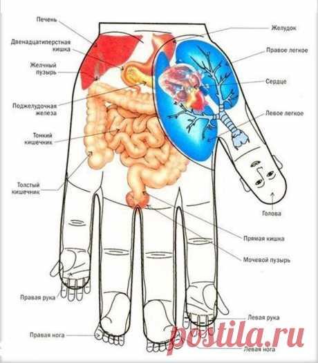 Водный массаж для рук Водный массаж для рук | Упрости себе жизнь