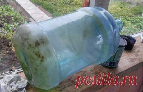 Простой способ почистить 20-литровую бутыль от зелени и грязи на дне
