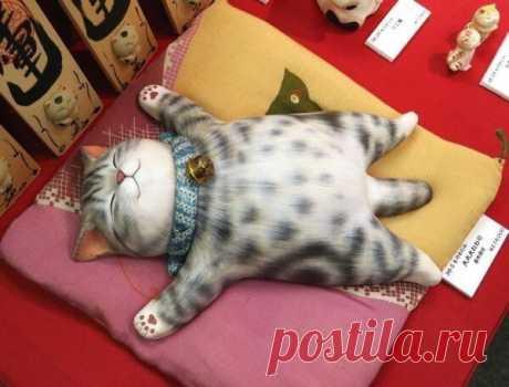 Коты придуманы природой, Чтоб проживая год зa шесть, Нести в домa уют, заботy И шерсть