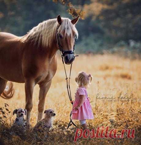 Когда рядом с домом есть животные, сердце у детей растет быстрее, чем они сами...