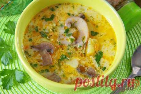 Сырный суп с грибами и вермишелью 1 - рецепты с фото на vpuzo.com