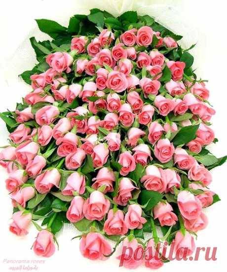ՇնՈՐՀԱՎՈՐ...7 ապրիլ🌷   Մայրության և Գեղեցկության , Պտղաբերության և Բերկրության գարնանային այս զարթոնք տոնը Ձերն է թանկագին հայուհիներ...: Առողջություն, երջանկություն ու հաջողություններ Ձեզ....🌼 Թող մայրական սրտի ջերմությունը , կանացի հմայքը, պայծառ ժպիտը, քնքշությունն ու գրավչությունը հավերժ ձեր ուղեկիցը լինեն: ԱՍՏՎԱԾԱՄՈՐ բարեխոսությամբ առաջնորդվենք...🙏Աստծո զորությամբ բոլոր դժվարություններն այսուհետ անցյալին մնան: