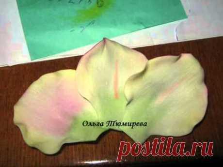 El maestro la clase de la florecita del gladiolo de foma (foamirana) - YouTube