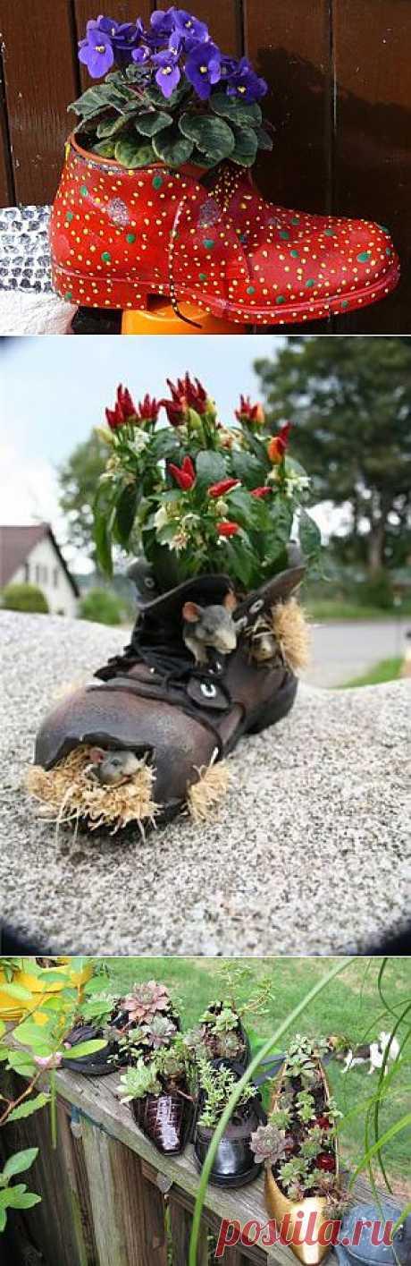 Обувь вместо клумбы. Старые сапоги, ботинки и резинки довольно давно используют для создания изюминки в саду. Минимум усилий, а результат максимальный - внимание этой мини-клумбе обеспечено на 100%.