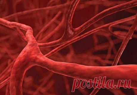 Грозит ли вам атеросклероз: общие признаки опасного заболевания сосудов
