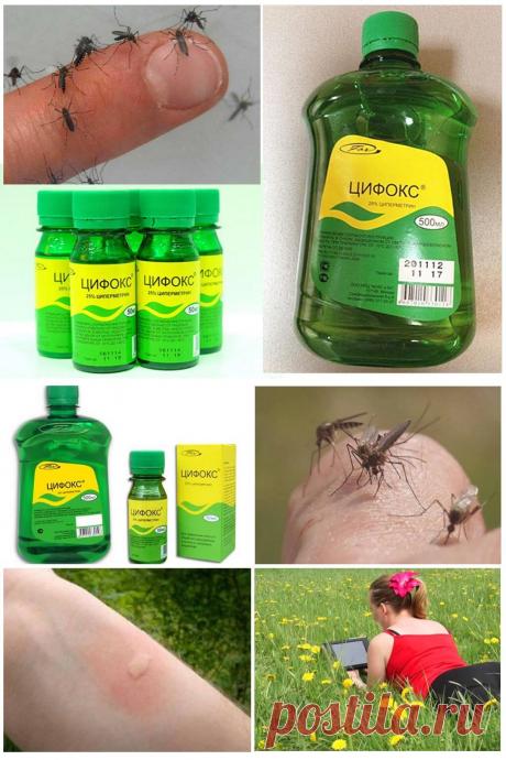 Цифокс от комаров - инструкция по применению, как правильно разводить